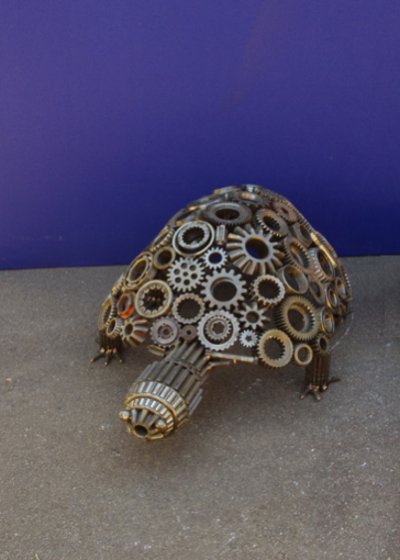 W001007 Cog Turtle Medium